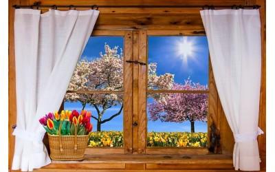 Mycie okien może być szybkie i przyjemne.